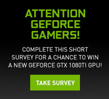 GeForce GTX 1080Ti Survey
