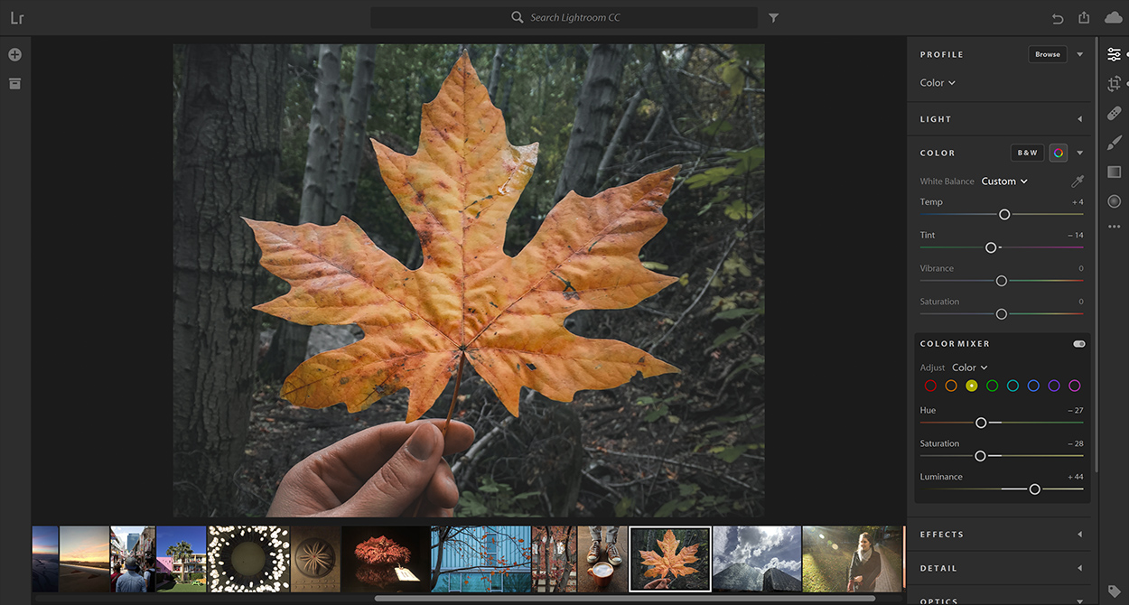 Adobe Creative Cloud Accelerated on NVIDIA GPUs | NVIDIA
