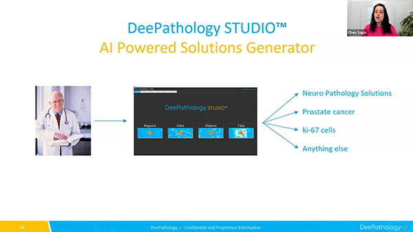 AI Creation Platforms for Non-AI Experts in Digital Pathology