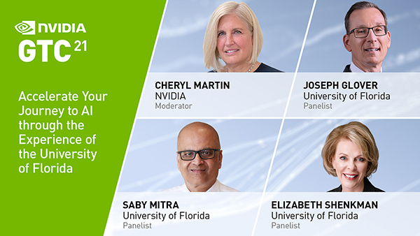 Accelerate Your Journey to AI through the Experience of the University of Florida