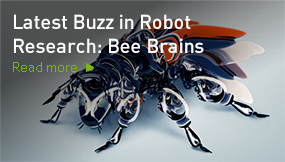 Latest Buzz in Robot Research: Bee Brains