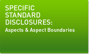 SPECIFIC STANDARD DISCLOSURES: Aspects and Aspect Boundaries