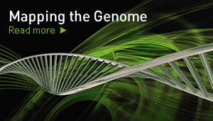 Mapping the Genome