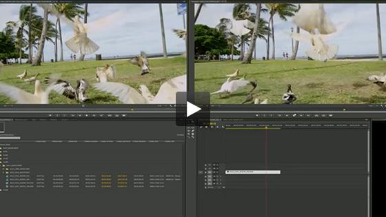 Adobe Premiere Pro CC - Faster Video Editing|NVIDIA